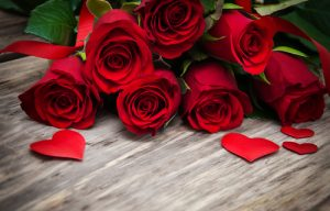 red-roses-valentines-day-flowers