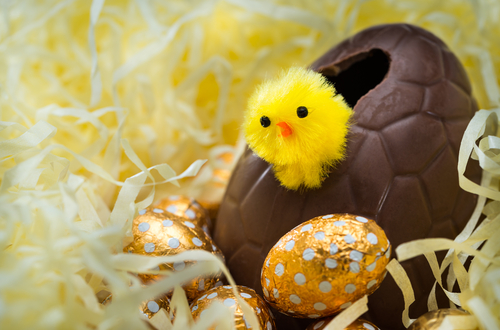 Flower buy delivery blog flower buy delivery blog easter egg chick negle Gallery