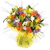 flower-varieties