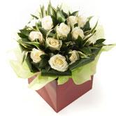 Valentine's 12 Ivory Roses Arrangement