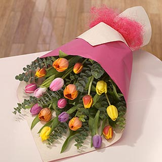 Awakening Tulip Bouquet
