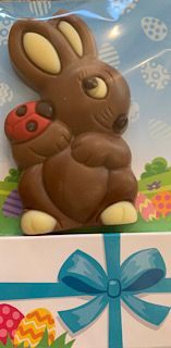 Chocolate Bunny with Ladybird
