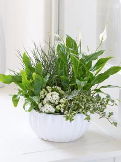 Classic Green & White Planter