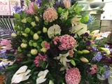 Pastel Floral Arrangement Display