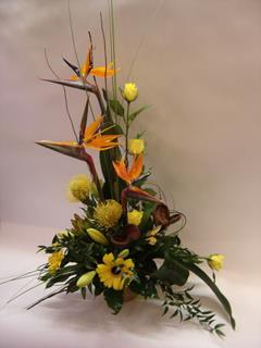 Tropical Birds of Paradise arrangement