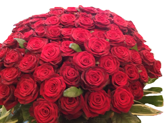 Elegant 100 Red Rose Arrangement