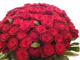 Elegant 100 Red Rose Arrangement