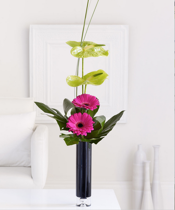 Gerbera and Arthurium Special Arrangement