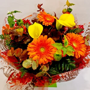 autumn-flowers category