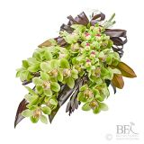 Wrapped Bouquet of Cymbidium Orchids
