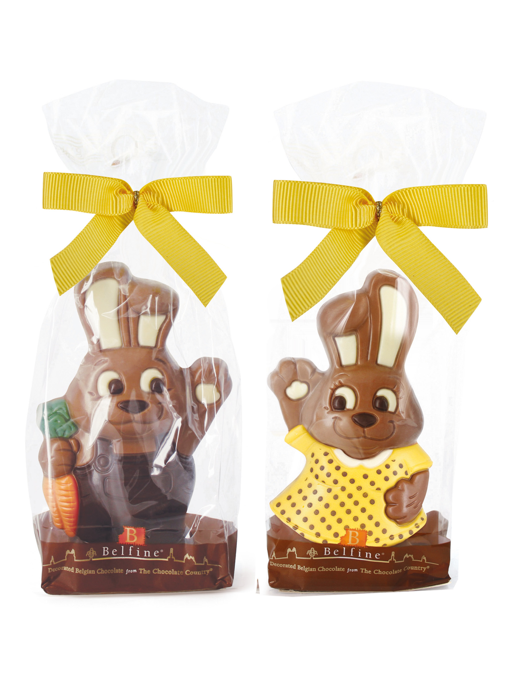 Mr & Mrs Chocolate Bunny