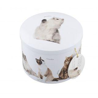 Gardiner's Vanilla Fudge Cat Tin