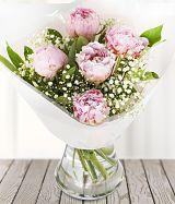 peony-roses category