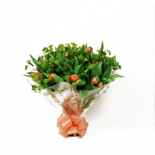 Tulipa Hand-Tied Arrangement