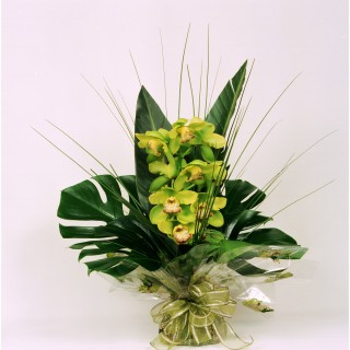 Tropical Singapore Modern Hand-Tied Bouquet