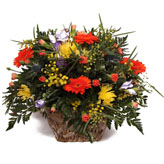 Orange Fizz Basket Arrangement