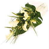 White Modern Tied Funeral Sheaf of Calla Lilies
