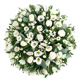 White posy pad delivered in the uk funeral posy pad arranged in white flowers mightylinksfo Images