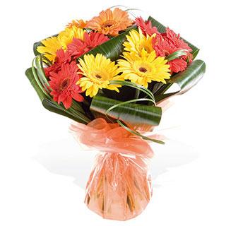 Fiesta Gerbera Hand-Tied Bouquet