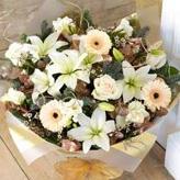 winter-flowers category