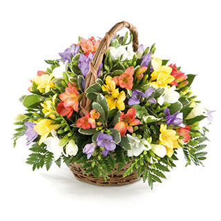 Fragrant Freesia Basket Arrangement