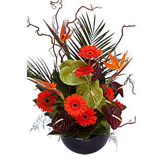 Standing Ovation Vase Arrangement