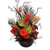 valentines-day-vase-arrangements category