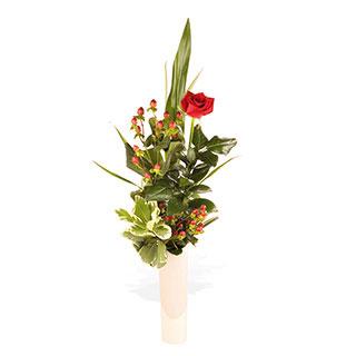 Una Rosa - Red Rose Display