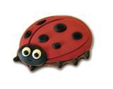 Chocolate Spot the Ladybird