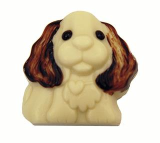 Chocolate Charles the Spaniel
