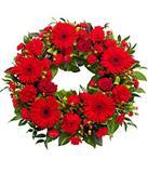 Red Gerbera Wreath