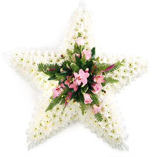 Flower Delivery Edinburgh on Home   Flowers   Funeral Flowers   Pink   White Star Funeral Tribute