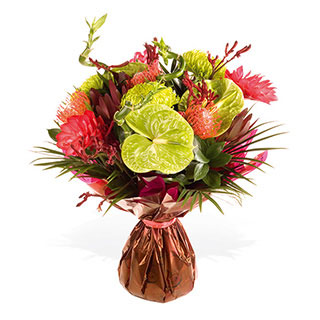 Flower Delivery on Home   Flowers   Occasion   Birthday Flowers   Tropical Jungle Flower