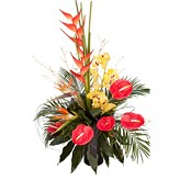 A Grand Design Contemporary flower arrangements|flowers delivered by The Harvest Garden|Edinburgh