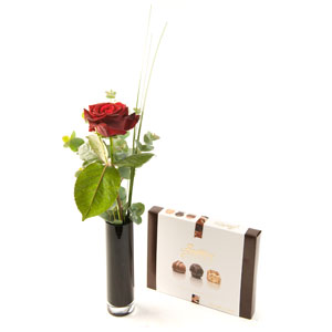 Stolen Kiss Red Rose & Chocolates