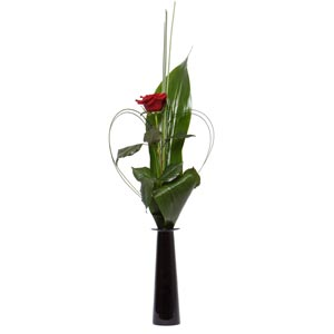 Stolen Kiss Single Red Rose in Vase