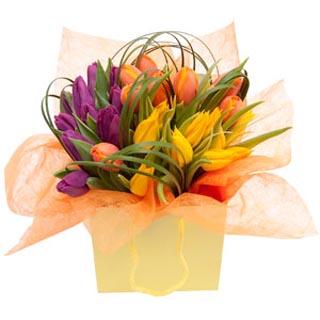 Tulip Bouquet in Gift Bag