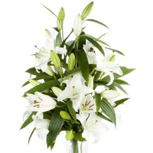 White Oriental Lilly Vase Arrangement